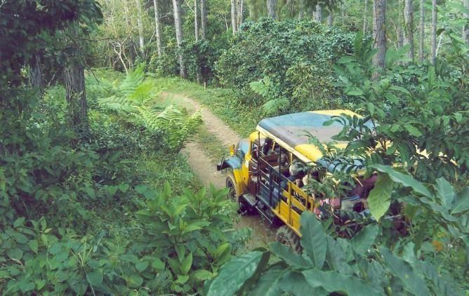 Nature Tour Nicho - Trinidad