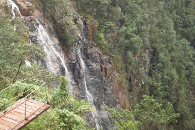 The Grand Safari Combinando Naturaleza
