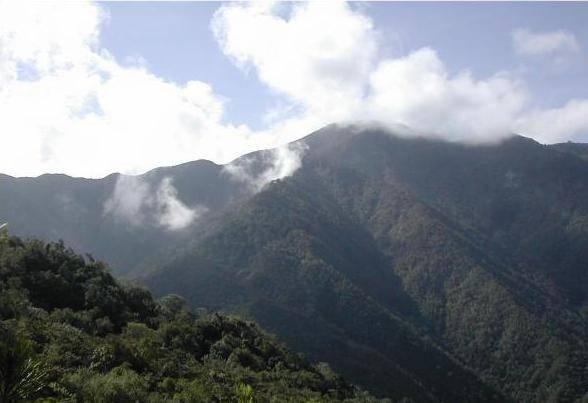 Mountain Safari
