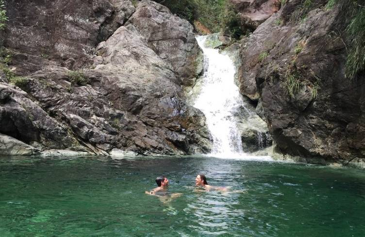 Excursión El Yunque (Incluye refrigerio)