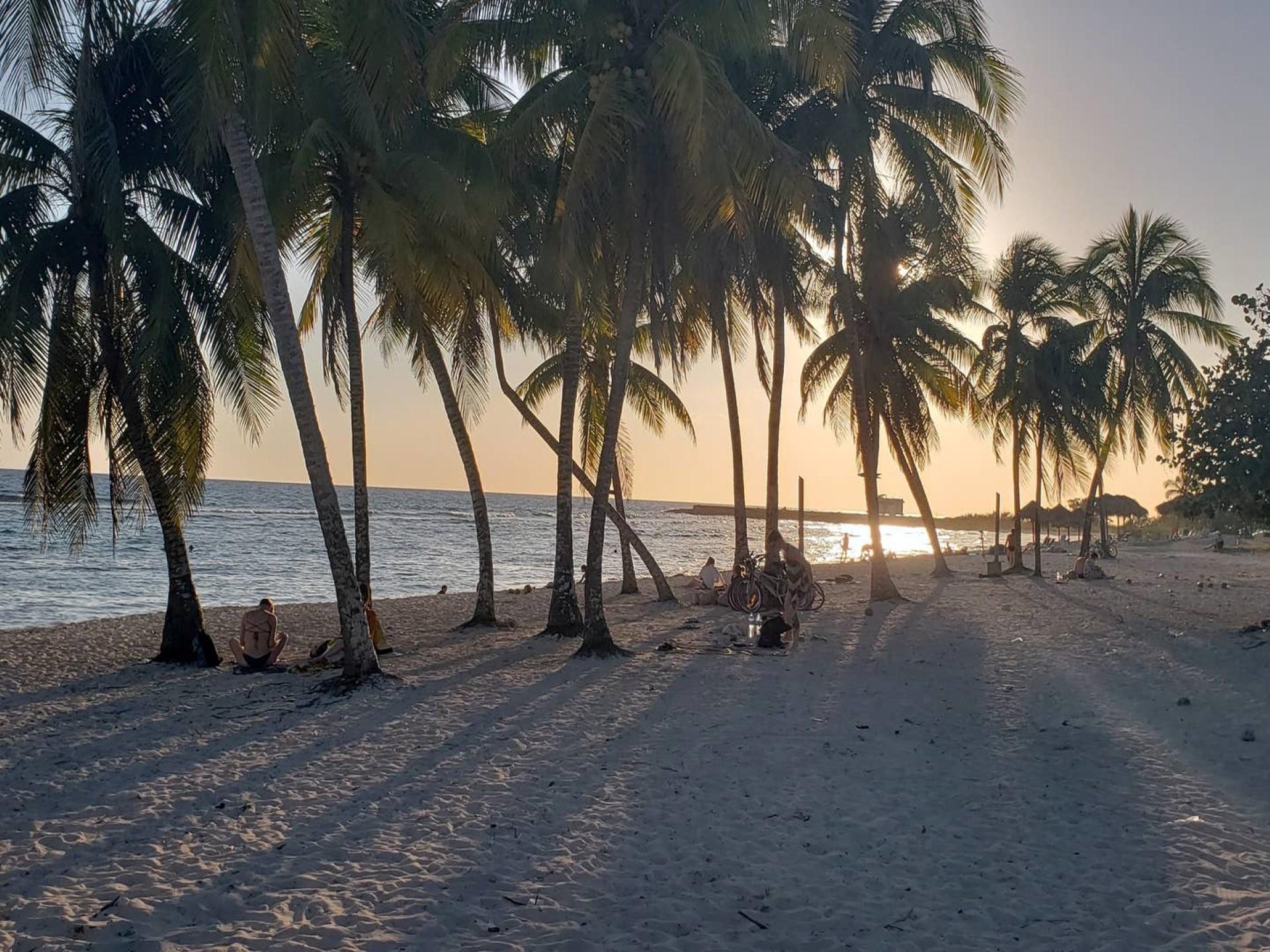 El Barbero -                                                 Playa
